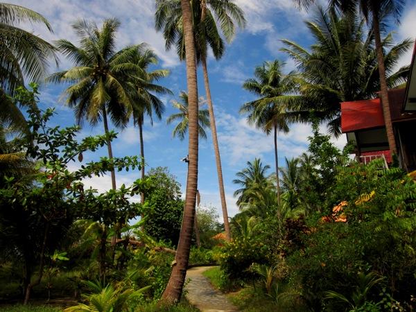 Национальный природный заповедник Му Ко Чанг: остров Ко Ваи