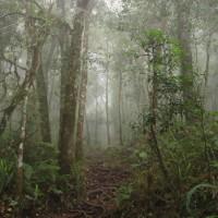 rinjani_lombok (42)