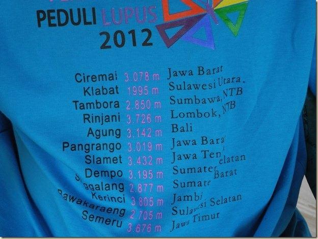 В Индонезии креативные футболки