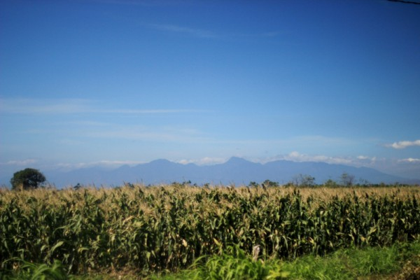 На том берегу - горы Бали