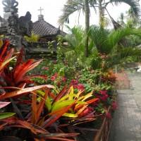 bali_september_2012 (24)
