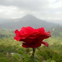 bali_september_2012 (66)