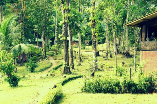 Территория нашего отеля в Сабанге
