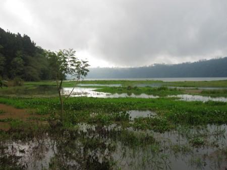 северный берег озера Buyan
