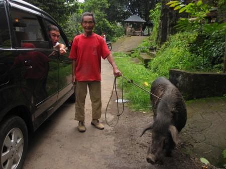 жители северного Бали