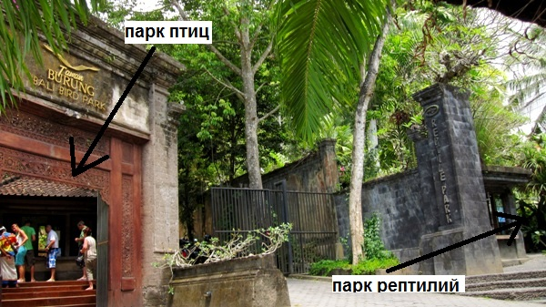 Парки Птиц и Рептилий на Бали
