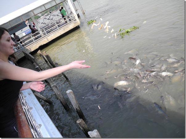 Рыбы-мутанты :-)