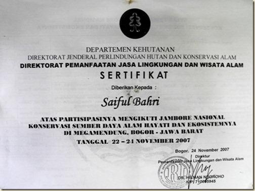 Сертификат проводника