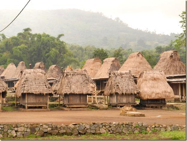 Деревня Wogo