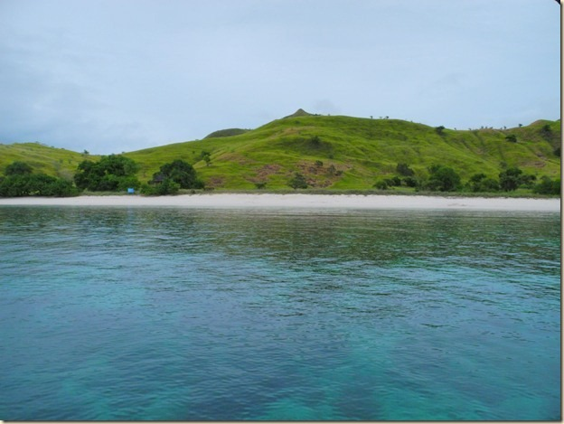 Розовый пляж на острове Комодо