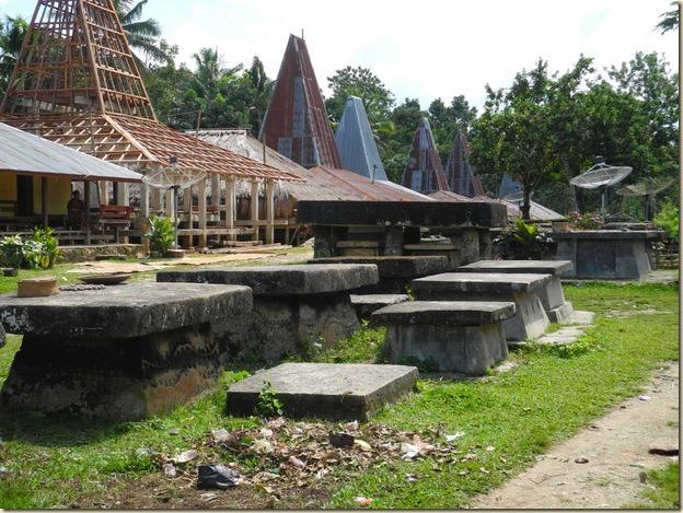 Деревня Пасунга